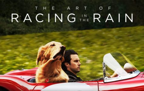 Mini Review: The Art of Racing in the Rain