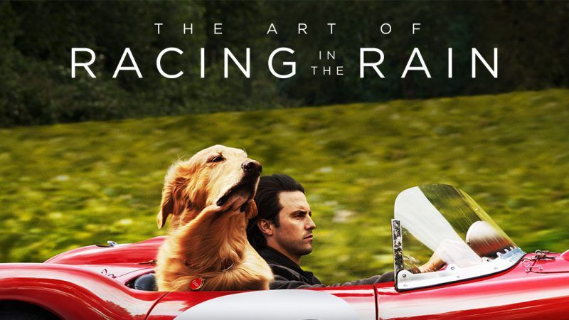 Mini+Review%3A+The+Art+of+Racing+in+the+Rain